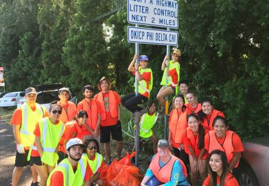 Adopt-A-Highway: Highway Cleanup